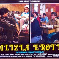 MALIZIA EROTICA (1979) di José Ramón Larraz - recensione del film
